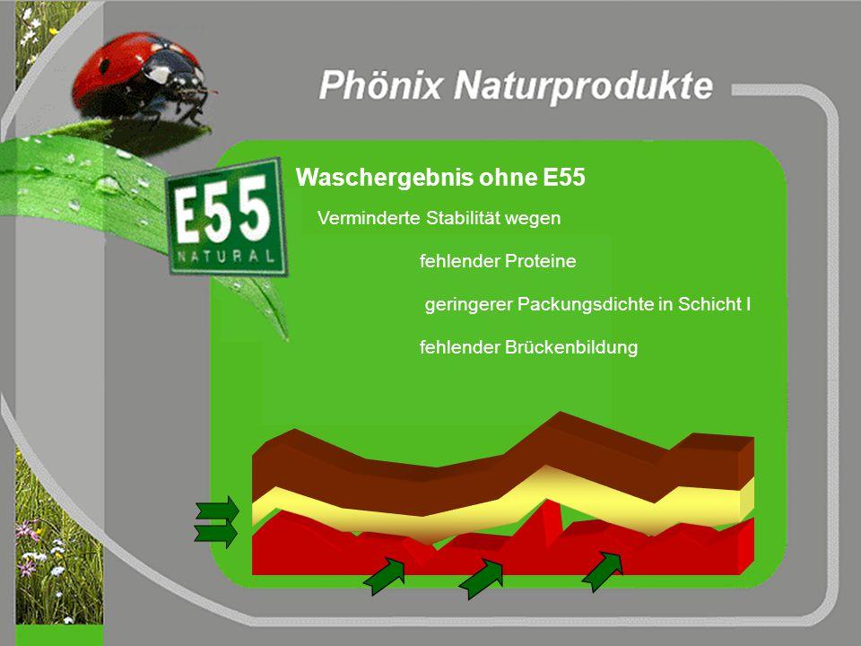 Waschergebnis mit E55 NanoSuperStyle SchichtstrukturLack Proteine künstliche und natürliche Tenside künstliche Tenside wachsartige Moleküle brückenver