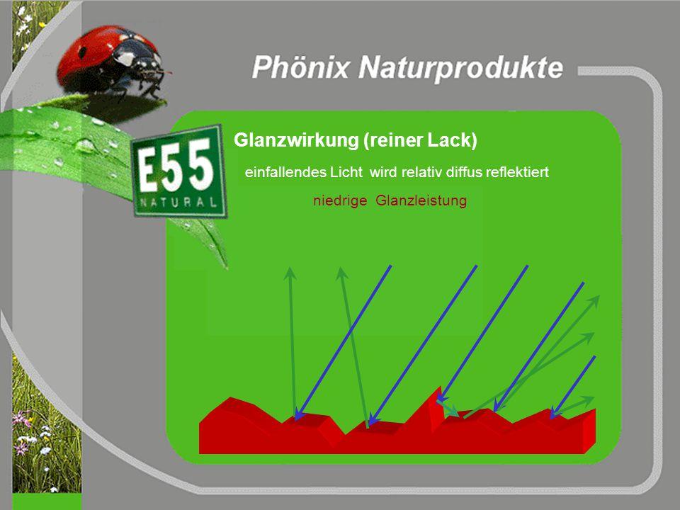Waschergebnis ohne E55 Verminderte Stabilität wegen fehlender Proteine geringerer Packungsdichte in Schicht I fehlender Brückenbildung
