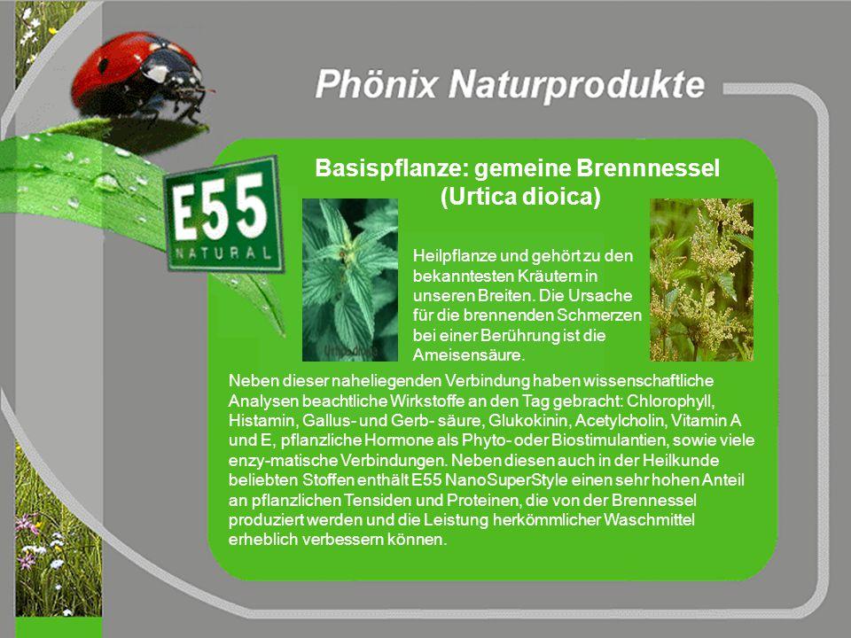 Herstellungsverfahren für E55 NanoSuperStyle neuartig patentiert umweltfreundlich rein nano-biologisch-physikalisch VOC freies Produkt