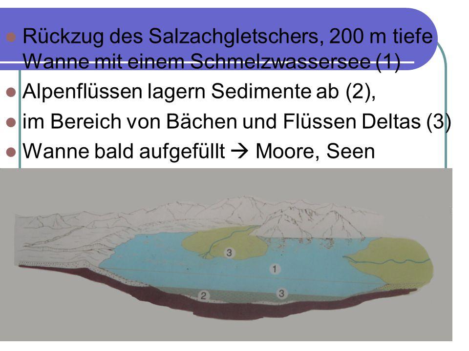Rückzug des Salzachgletschers, 200 m tiefe Wanne mit einem Schmelzwassersee (1) Alpenflüssen lagern Sedimente ab (2), im Bereich von Bächen und Flüssen Deltas (3) Wanne bald aufgefüllt  Moore, Seen