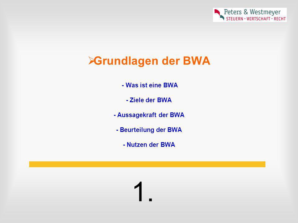 Schritte von der Standard-BWA zur Profi-Version Beratungsunterlage und Fragebogen Welche Fragen habe ich an mein Zahlenwerk mit Blick auf meine Unternehmensführung.