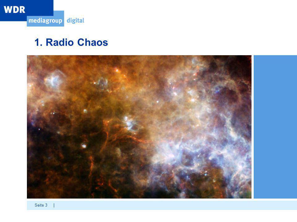 Seite 3 1. Radio Chaos