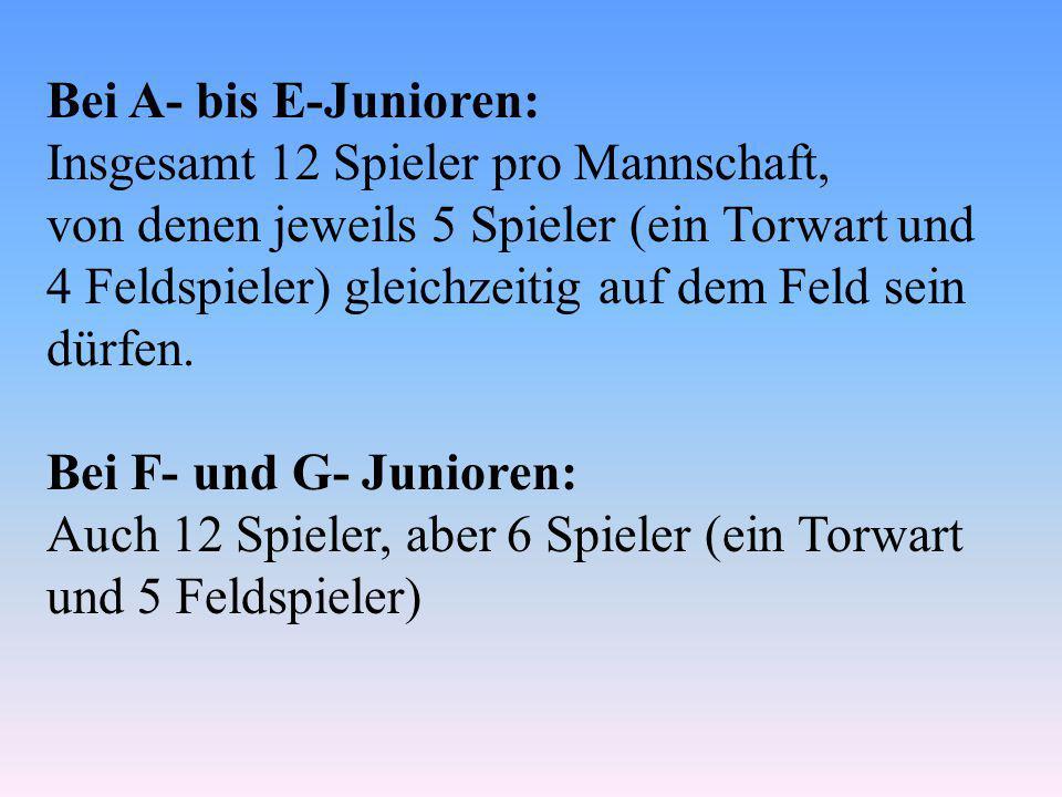Bei A- bis E-Junioren: Insgesamt 12 Spieler pro Mannschaft, von denen jeweils 5 Spieler (ein Torwart und 4 Feldspieler) gleichzeitig auf dem Feld sein dürfen.