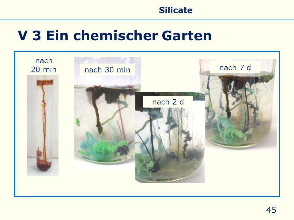 V 3 Ein chemischer Garten 45 nach 30 min nach 2 d nach 20 min nach 7 d Allgemeines Eigenschaften Silicate Silicone Glas