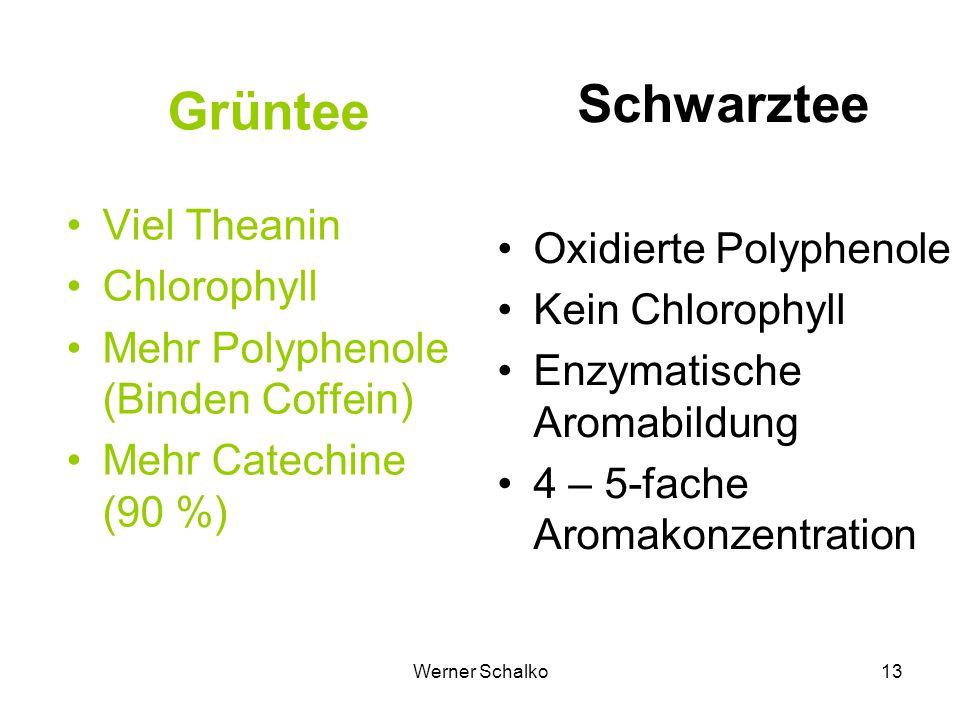 Werner Schalko13 Grüntee Viel Theanin Chlorophyll Mehr Polyphenole (Binden Coffein) Mehr Catechine (90 %) Schwarztee Oxidierte Polyphenole Kein Chloro