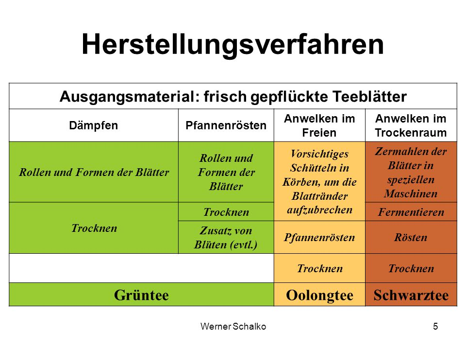 Werner Schalko5 Herstellungsverfahren Ausgangsmaterial: frisch gepflückte Teeblätter DämpfenPfannenrösten Anwelken im Freien Anwelken im Trockenraum R