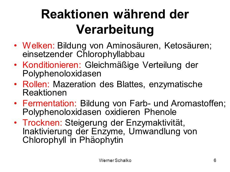 Werner Schalko6 Reaktionen während der Verarbeitung Welken: Bildung von Aminosäuren, Ketosäuren; einsetzender Chlorophyllabbau Konditionieren: Gleichm