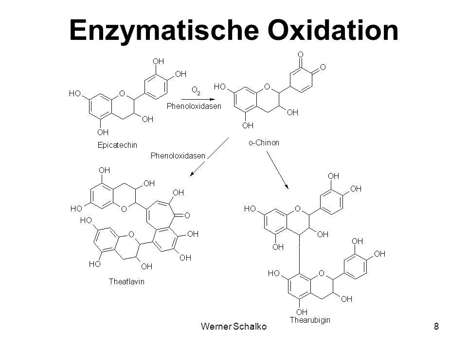 Werner Schalko9 Inhaltsstoffe von Tee Inhaltsstoffe in % T.