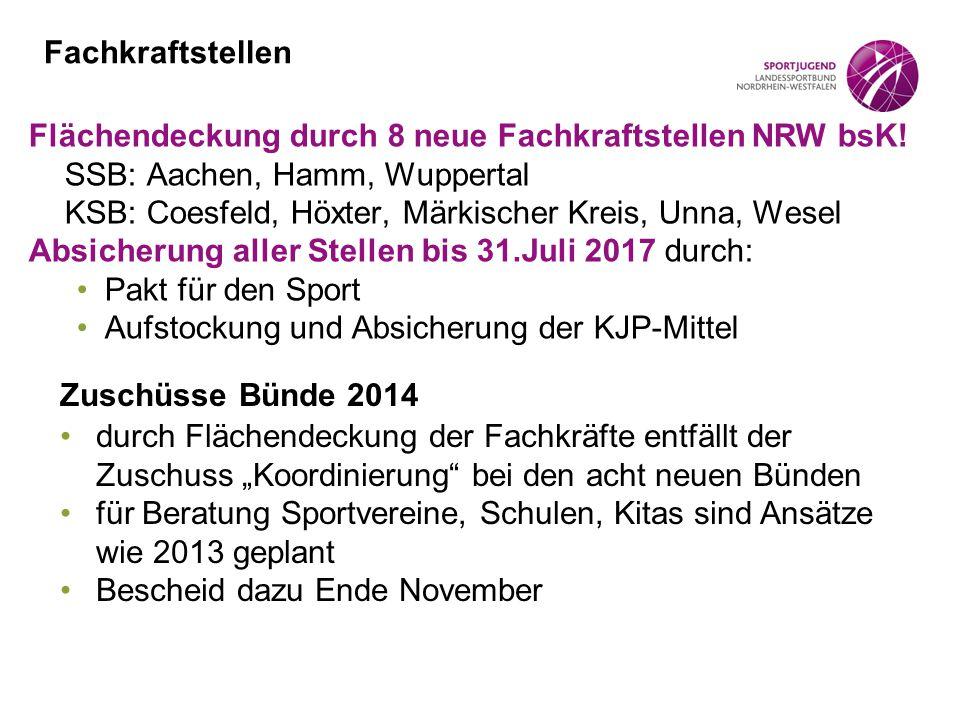 Fachkraftstellen Flächendeckung durch 8 neue Fachkraftstellen NRW bsK! SSB: Aachen, Hamm, Wuppertal KSB: Coesfeld, Höxter, Märkischer Kreis, Unna, Wes