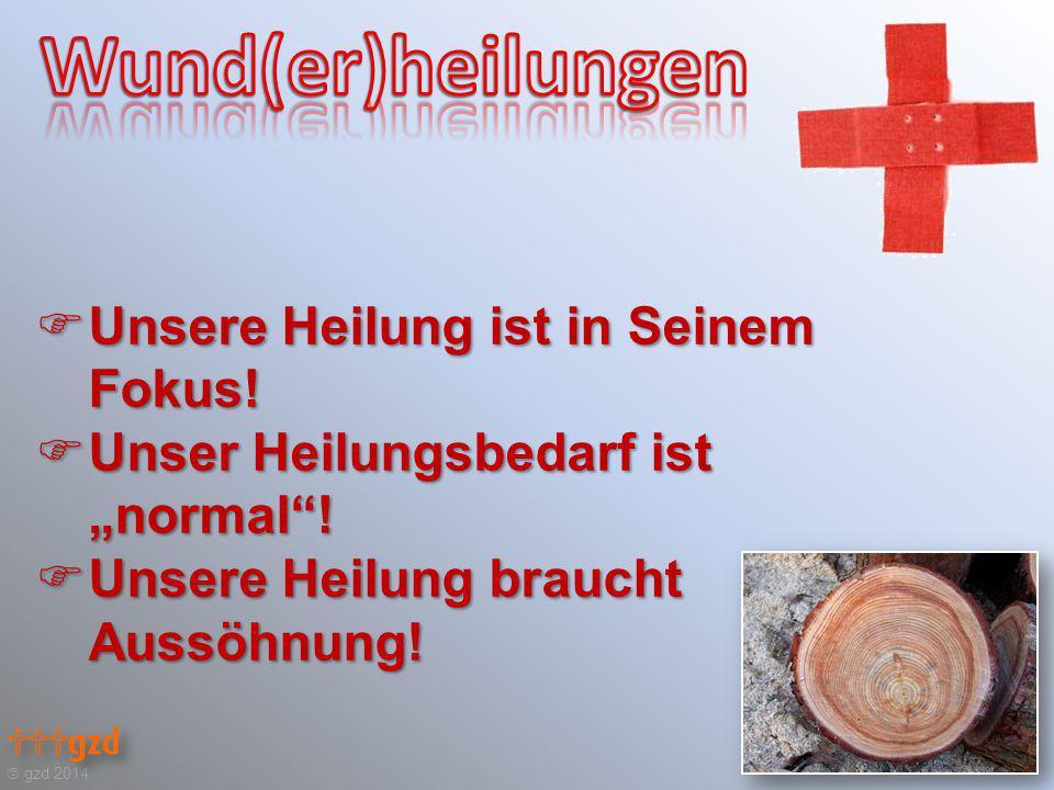 """ gzd 2014  Unsere Heilung ist in Seinem Fokus!  Unser Heilungsbedarf ist """"normal""""!  Unsere Heilung braucht Aussöhnung!"""
