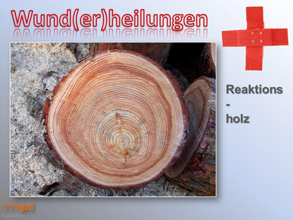 Reaktions - holz