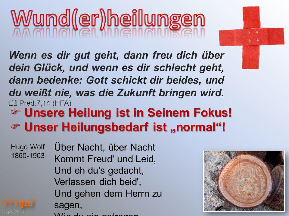 """ gzd 2014  Unsere Heilung ist in Seinem Fokus. Unser Heilungsbedarf ist """"normal ."""