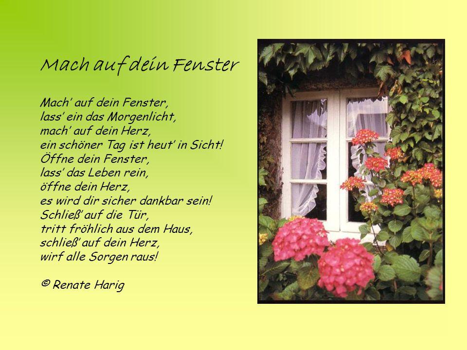 Mach auf dein Fenster Mach' auf dein Fenster, lass' ein das Morgenlicht, mach' auf dein Herz, ein schöner Tag ist heut' in Sicht.