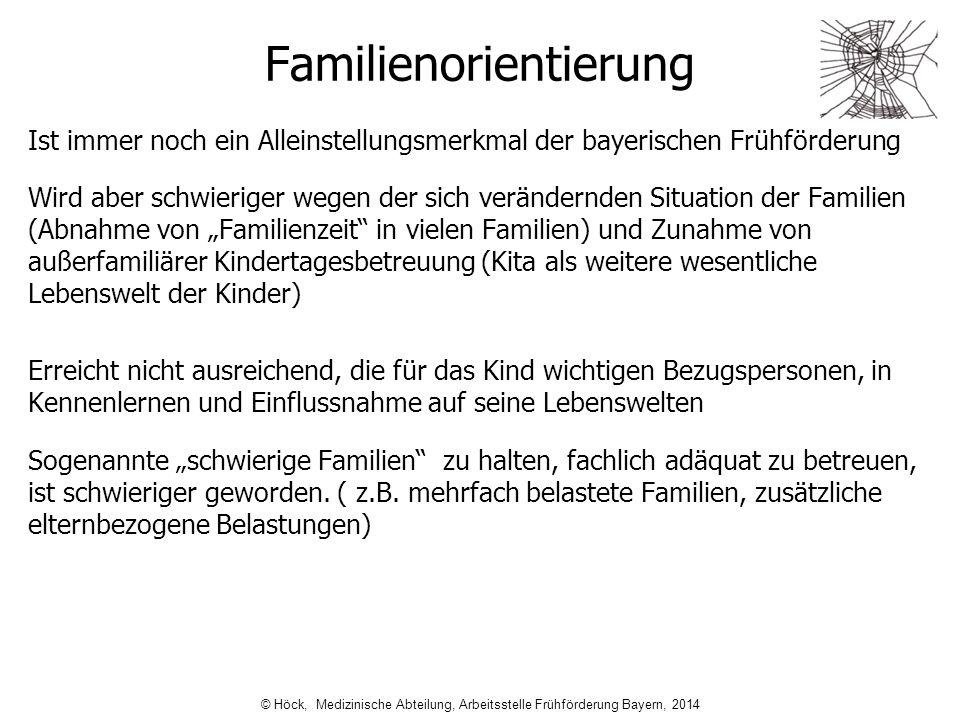 Familienorientierung Ist immer noch ein Alleinstellungsmerkmal der bayerischen Frühförderung Wird aber schwieriger wegen der sich verändernden Situati