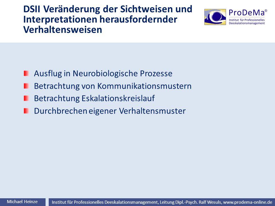 Ralf Wesuls © Institut für Professionelles Deeskalationsmanagement, Leitung Dipl.-Psych. Ralf Wesuls, www.prodema-online.de DSII Veränderung der Sicht