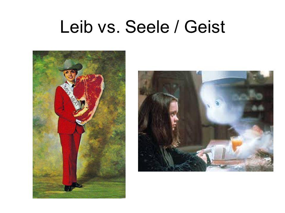 Leib vs. Seele / Geist