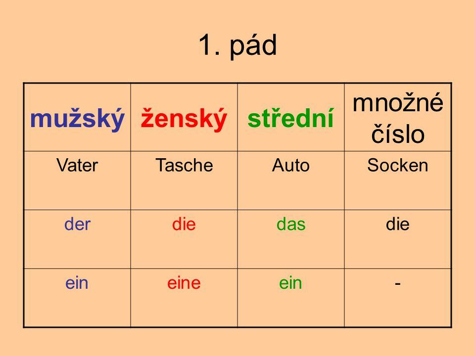 1.pád Eine Tasche ist groß. Der Bruder wohnt in Prag.