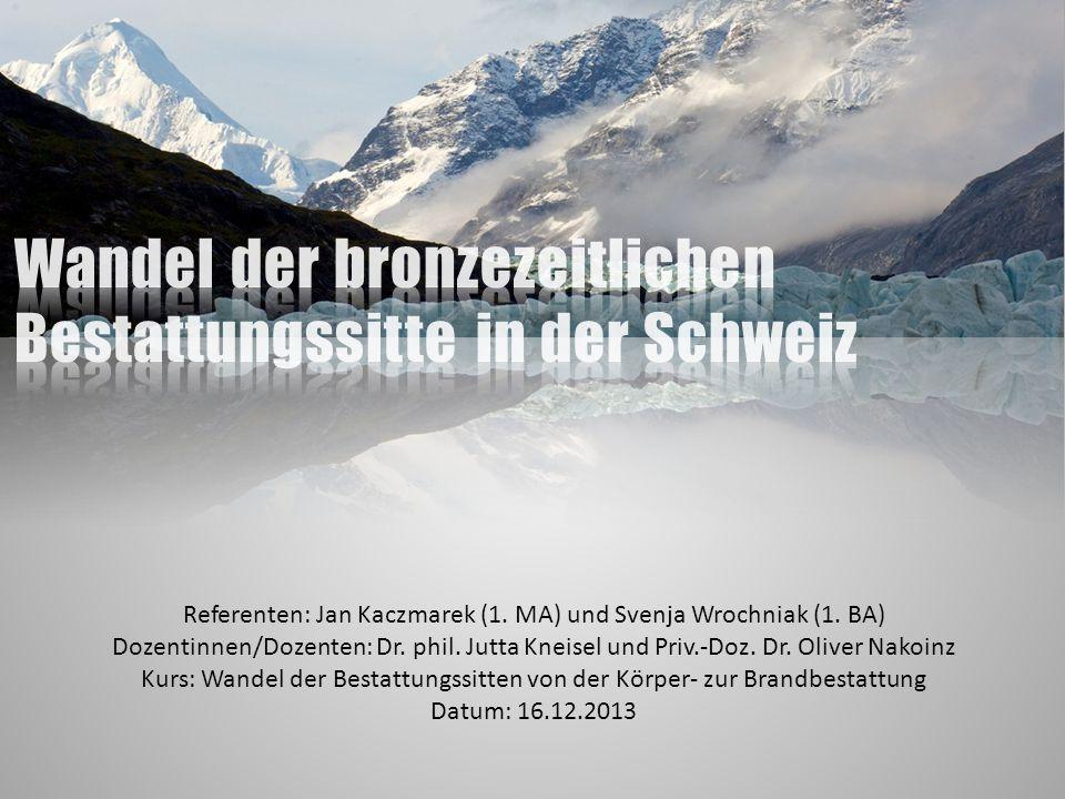Gliederung Geografie der Schweiz Chronologie der Schweiz Von der Glockenbecherkultur zur späten Bronzezeit Datenaufnahme Auswertung Literatur