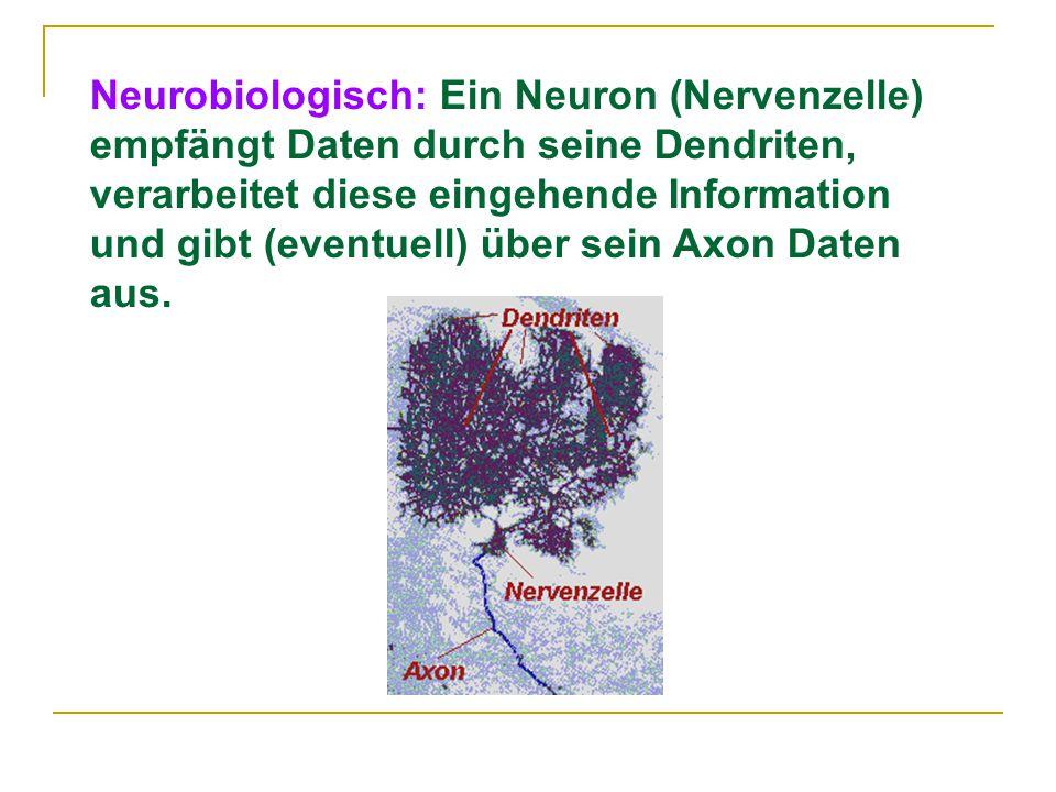 Neurobiologisch: Ein Neuron (Nervenzelle) empfängt Daten durch seine Dendriten, verarbeitet diese eingehende Information und gibt (eventuell) über sein Axon Daten aus.