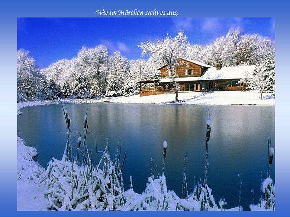 Die Natur versteckt sich unter Eis und Schnee.