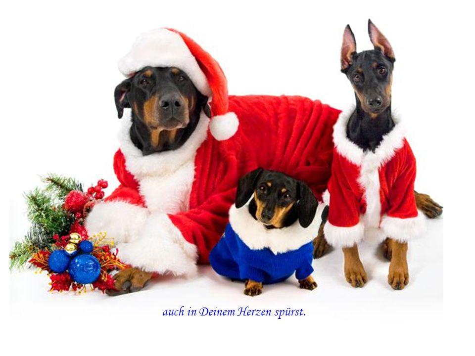 des nahendes Weihnachtsfestes