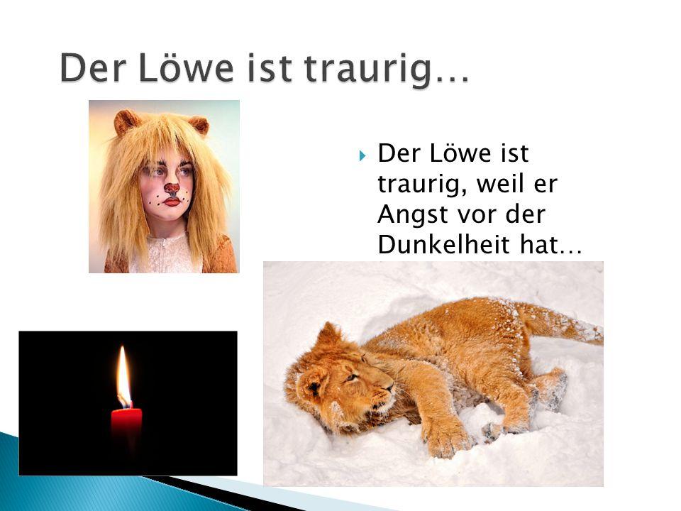  Der Löwe ist traurig, weil er Angst vor der Dunkelheit hat…