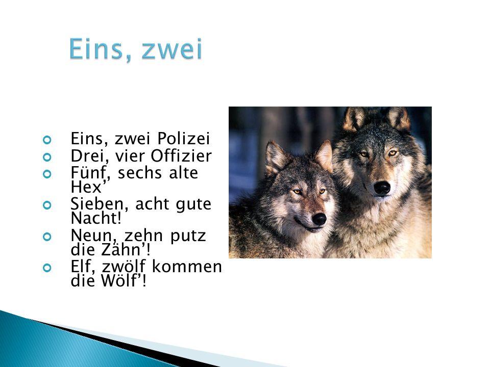 Eins, zwei Polizei Drei, vier Offizier Fünf, sechs alte Hex' Sieben, acht gute Nacht! Neun, zehn putz die Zähn'! Elf, zwölf kommen die Wölf'!