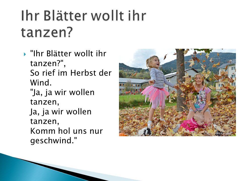  Ihr Blätter wollt ihr tanzen? , So rief im Herbst der Wind.