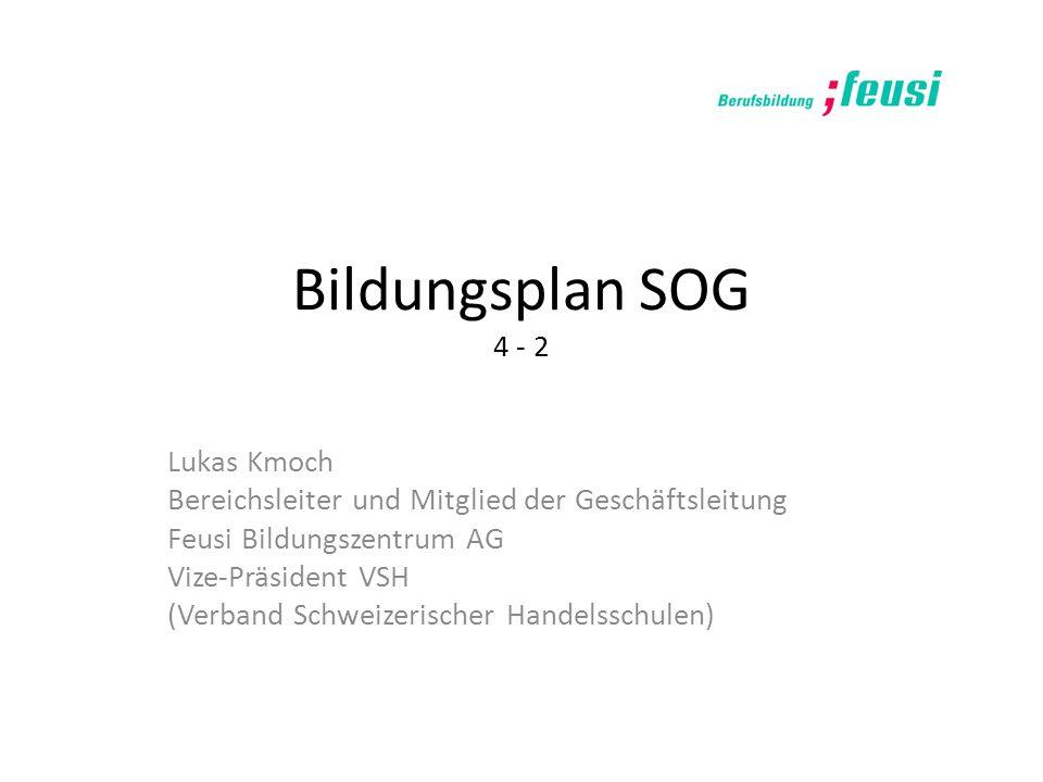 Bildungsplan SOG 4 - 2 Lukas Kmoch Bereichsleiter und Mitglied der Geschäftsleitung Feusi Bildungszentrum AG Vize-Präsident VSH (Verband Schweizerisch