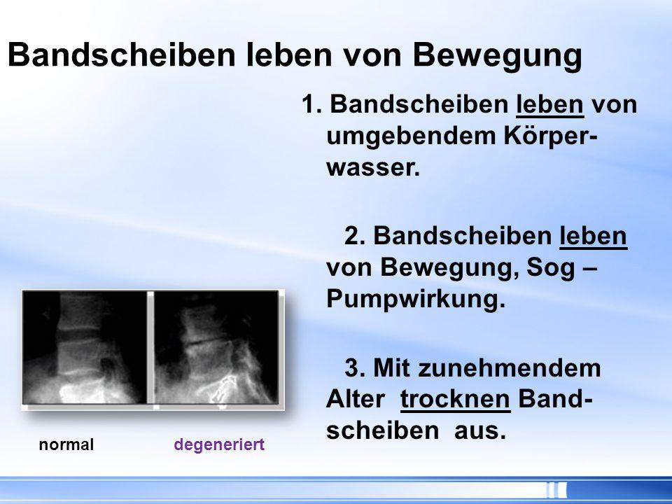1.Degeneration (Abnutzung) 2. Protrusion (Vorwölbung) 3.