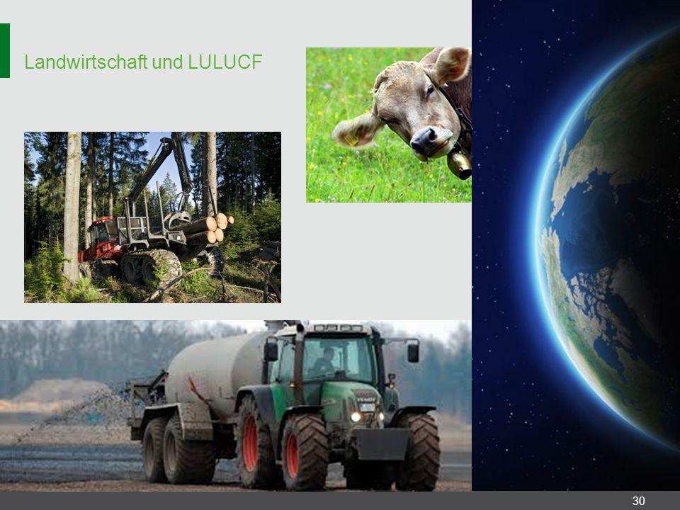 Landwirtschaft und LULUCF 30