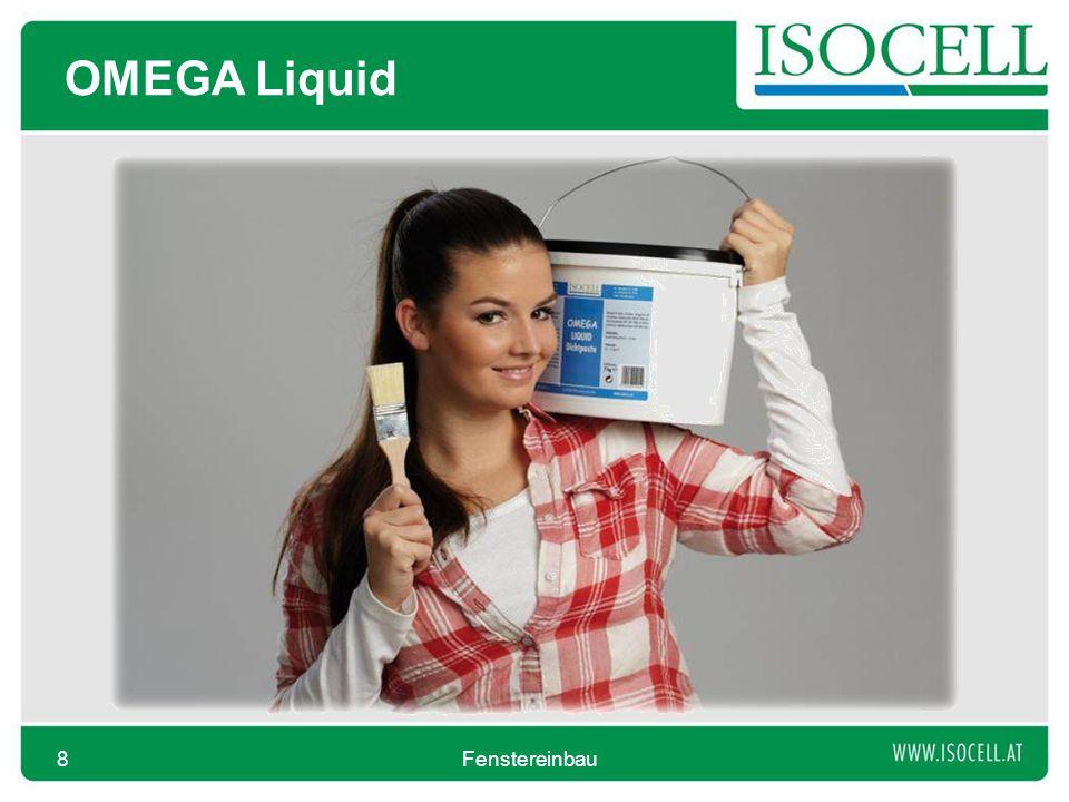 OMEGA Liquid Fenstereinbau8