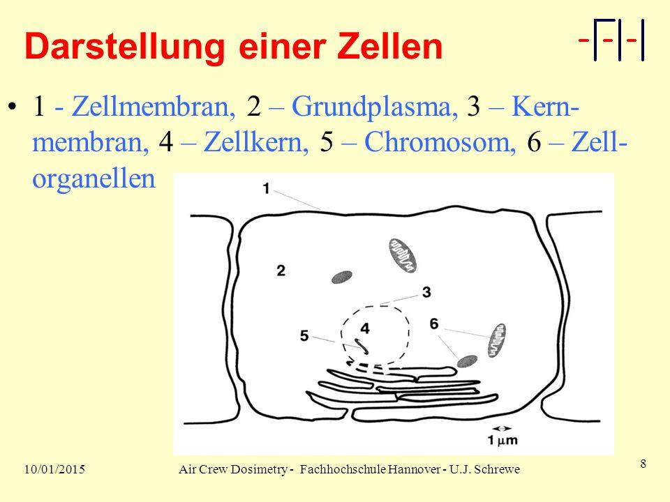 10/01/2015Air Crew Dosimetry - Fachhochschule Hannover - U.J. Schrewe 8 Darstellung einer Zellen 1 - Zellmembran, 2 – Grundplasma, 3 – Kern- membran,
