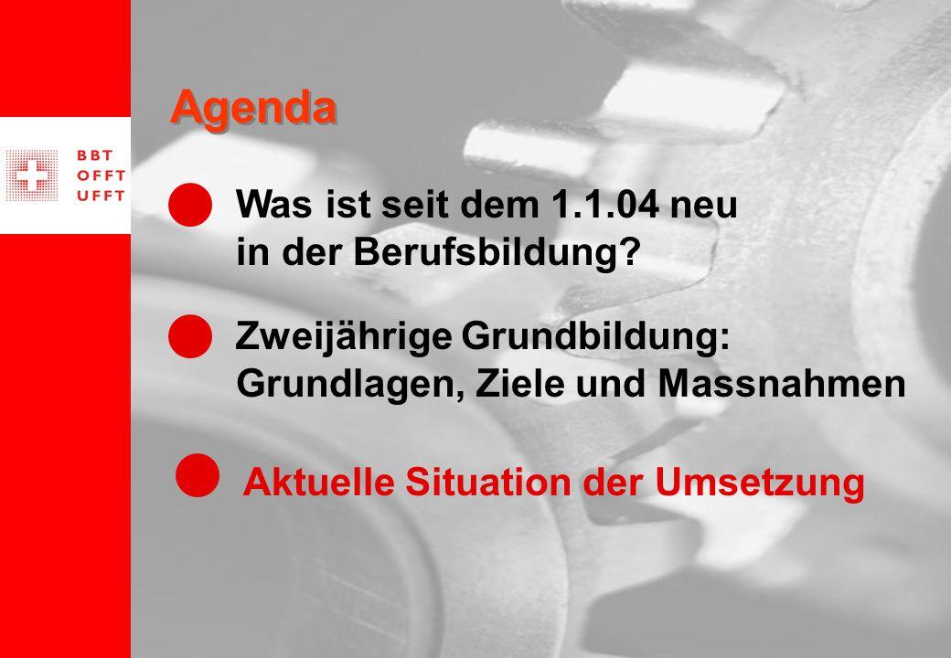 12 Agenda Zweijährige Grundbildung: Grundlagen, Ziele und Massnahmen Aktuelle Situation der Umsetzung Was ist seit dem 1.1.04 neu in der Berufsbildung?
