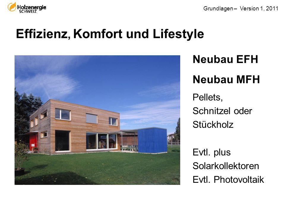 Grundlagen – Version 1, 2011 Effizienz, Komfort und Lifestyle Neubau EFH Neubau MFH Pellets, Schnitzel oder Stückholz Evtl. plus Solarkollektoren Evtl