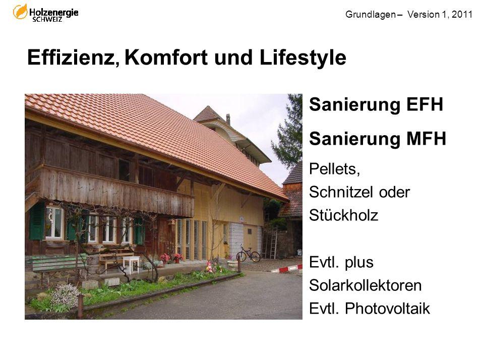 Grundlagen – Version 1, 2011 Effizienz, Komfort und Lifestyle Sanierung EFH Sanierung MFH Pellets, Schnitzel oder Stückholz Evtl. plus Solarkollektore