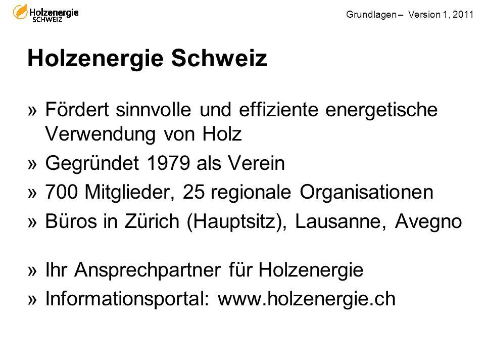 Grundlagen – Version 1, 2011 »Fördert sinnvolle und effiziente energetische Verwendung von Holz »Gegründet 1979 als Verein »700 Mitglieder, 25 regiona