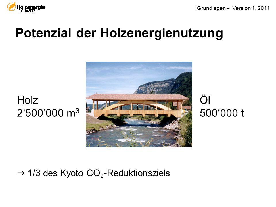 Grundlagen – Version 1, 2011 Potenzial der Holzenergienutzung  1/3 des Kyoto CO 2 -Reduktionsziels Öl 500'000 t Holz 2'500'000 m 3