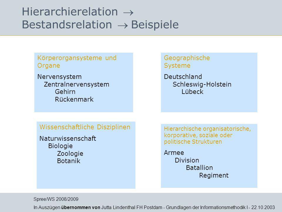 Hierarchierelation  Bestandsrelation  Beispiele Körperorgansysteme und Organe Nervensystem Zentralnervensystem Gehirn Rückenmark Geographische Syste