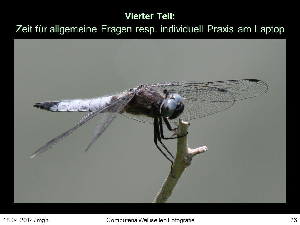 Vierter Teil: Zeit für allgemeine Fragen resp. individuell Praxis am Laptop Computeria Wallisellen Fotografie2318.04.2014 / mgh