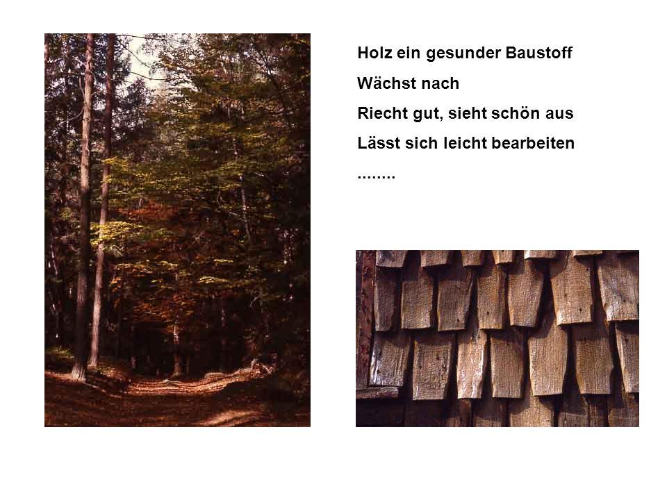 Holz ein gesunder Baustoff Wächst nach Riecht gut, sieht schön aus Lässt sich leicht bearbeiten........