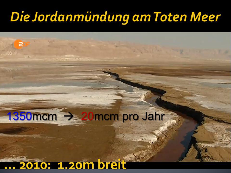 … 2010: 1.20m breit 1350mcm  20mcm pro Jahr