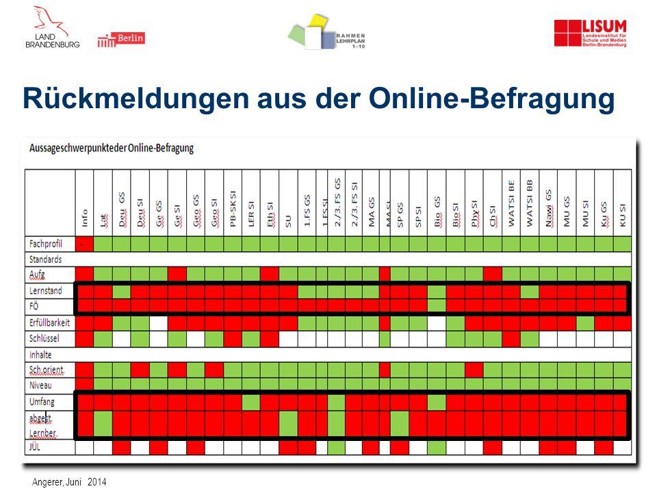 Rückmeldungen aus der Online-Befragung Angerer, Juni 2014