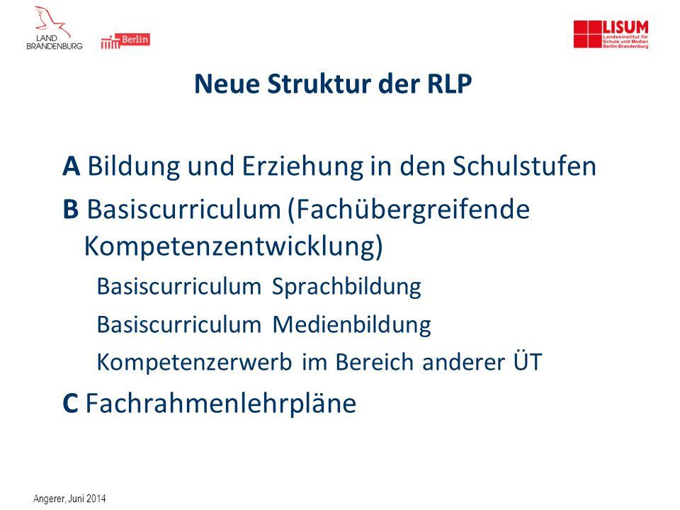 Neue Struktur der RLP A Bildung und Erziehung in den Schulstufen B Basiscurriculum (Fachübergreifende Kompetenzentwicklung) Basiscurriculum Sprachbild