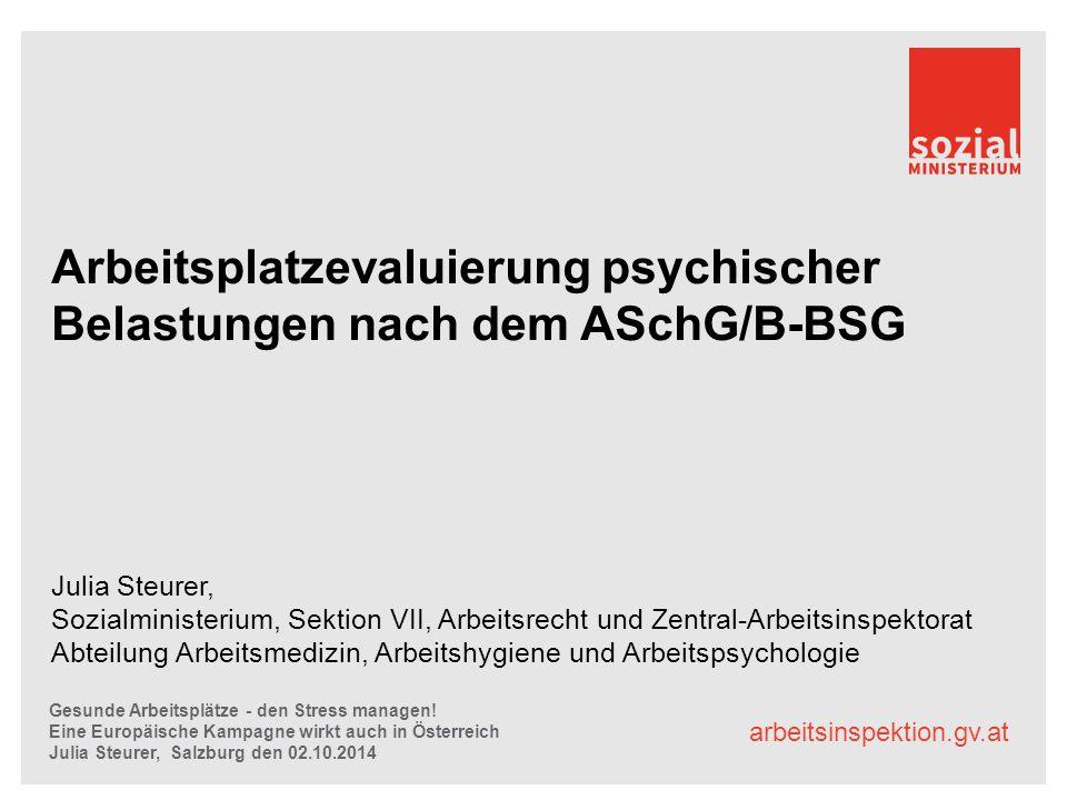 arbeitsinspektion.gv.at Arbeitsplatzevaluierung psychischer Belastungen nach dem ASchG/B-BSG Julia Steurer, Sozialministerium, Sektion VII, Arbeitsrec