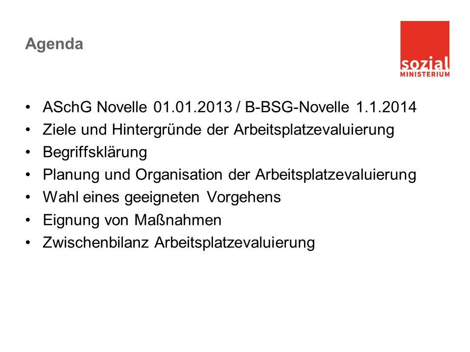 Agenda ASchG Novelle 01.01.2013 / B-BSG-Novelle 1.1.2014 Ziele und Hintergründe der Arbeitsplatzevaluierung Begriffsklärung Planung und Organisation d