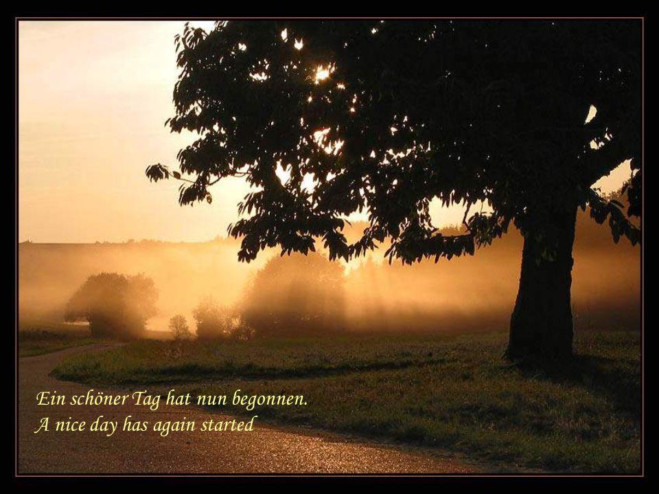 Gib mir wieder Kraft und neuen Mut dazu Give me strength again and new courage.