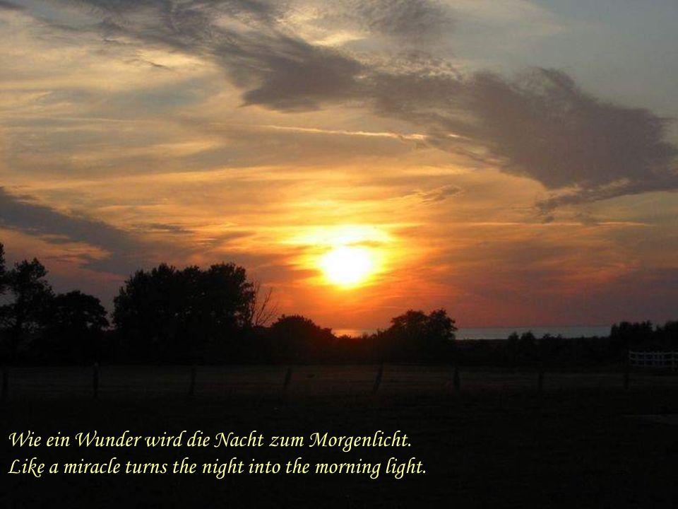 Wie ein Wunder wird die Nacht zum Morgenlicht.