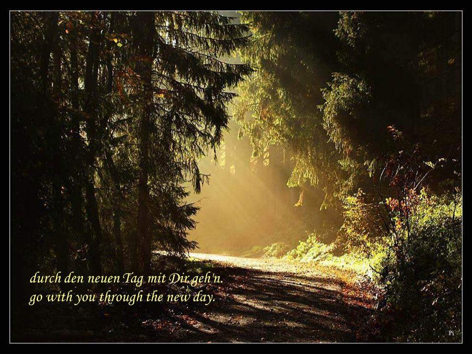 durch den neuen Tag mit Dir geh n go with you through the new day.