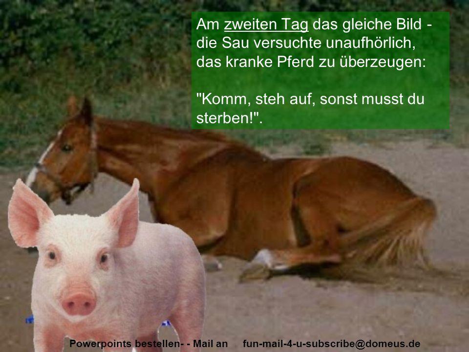 Powerpoints bestellen- - Mail an fun-mail-4-u-subscribe@domeus.de Am zweiten Tag das gleiche Bild - die Sau versuchte unaufhörlich, das kranke Pferd z